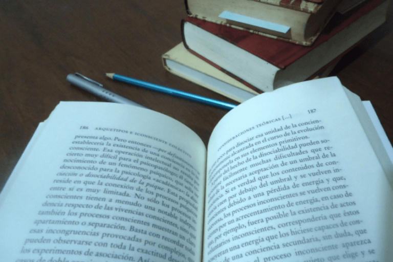 temas literatura que mas entran en selectividad